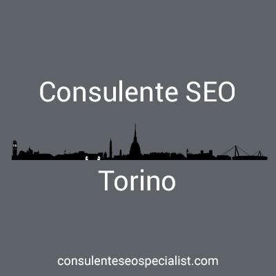Consulente SEO Torino