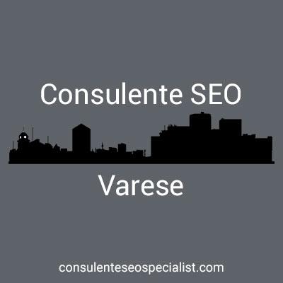Consulente SEO Varese